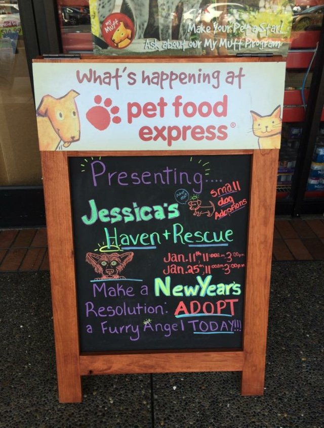 Dog Adoption Pet Food Express