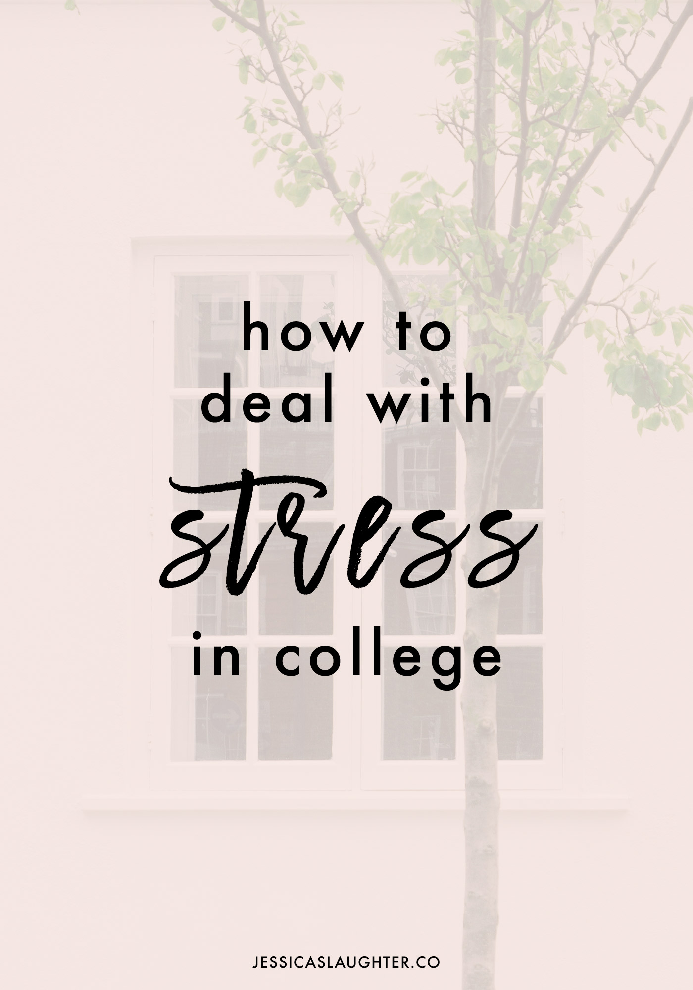 How To Deal With Stress In College | Jessica Slaughter