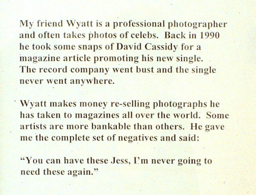 wyatts_photos_of_david_cassidy_(text_detail)_the_wilkinson_gallery_1998