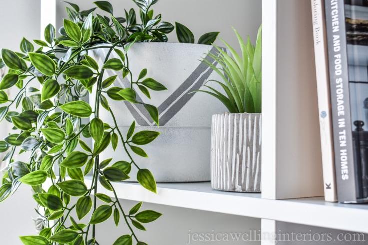 image of modern indoor plant pot on bookshelf