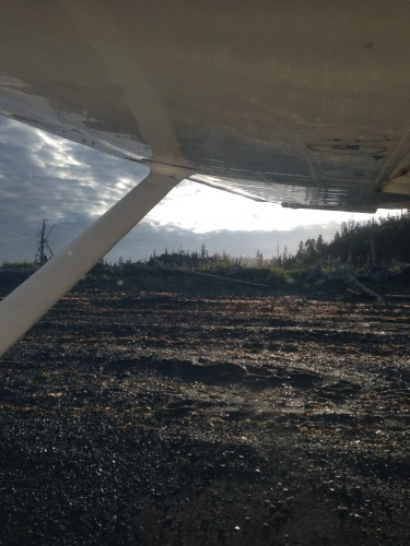 "Early morning sunshine on the beach ""runway""!"