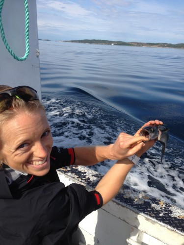 Liz checking out the little mackerel!