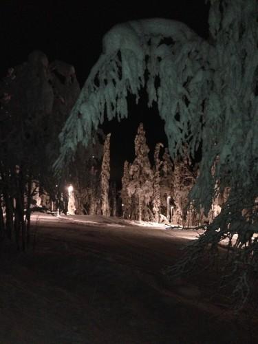 "The ""night skiing"" at 3:00pm!"