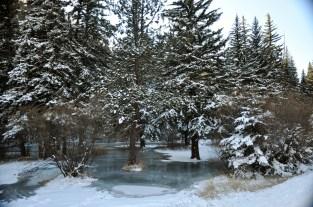 Central Colorado Winter Scene