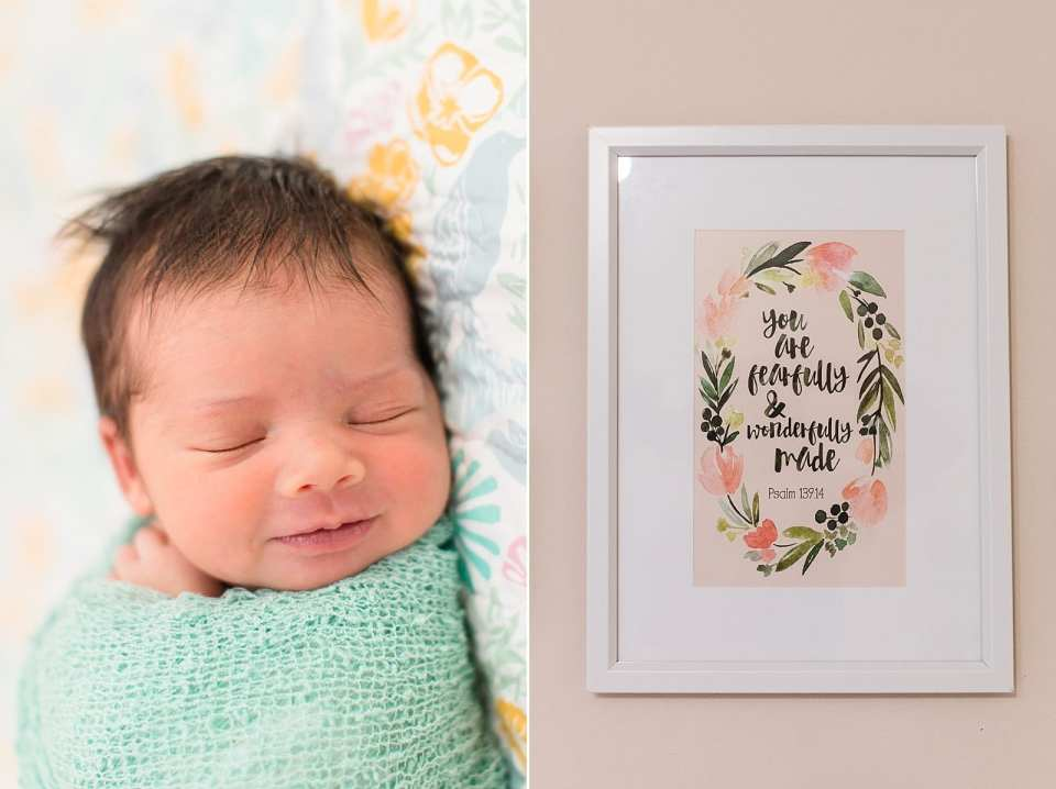 clemmons newborn photographer