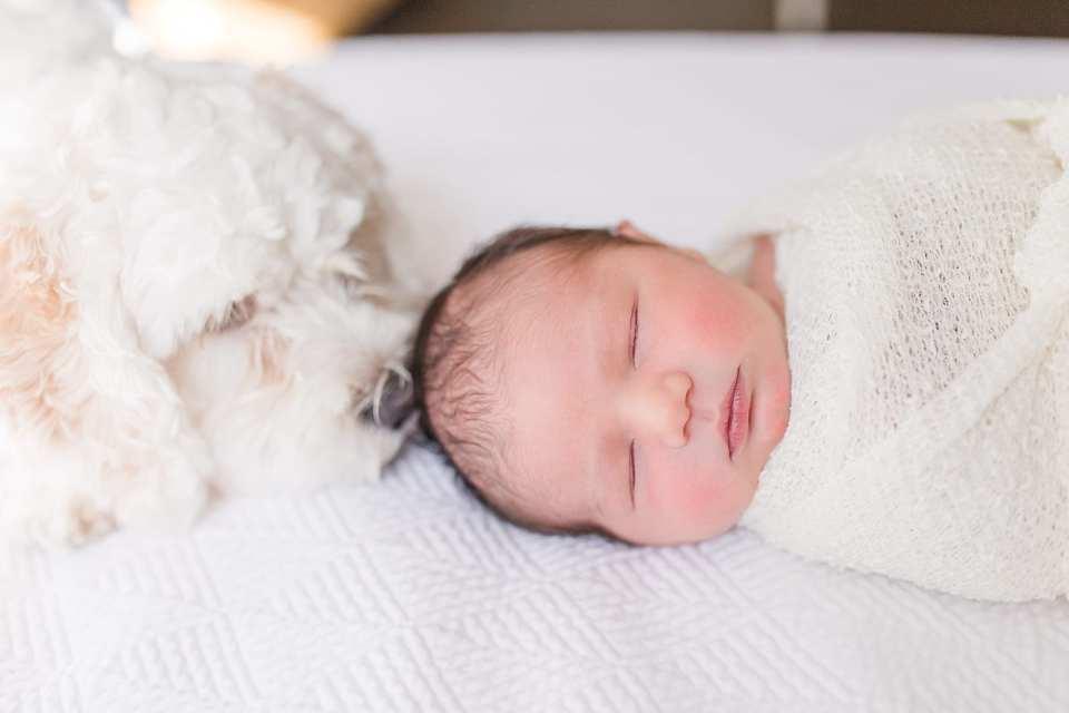 durham newborn photographer