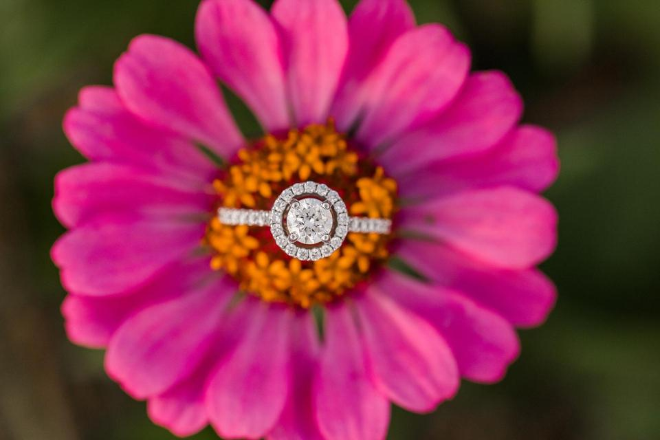 Paul J Ciener Botanical Garden Engagement Kernersville