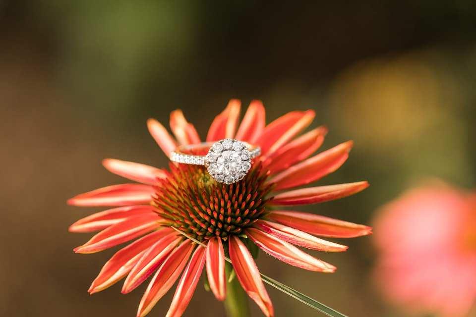 Botanical Gardens Engagement Winston Salem Photographer