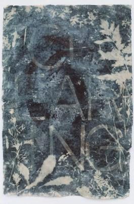 Saprophyte I. 55cm x 80 cm