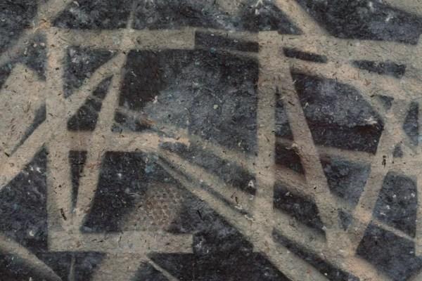 Saprophyte VII (detail). 55cm x 80 cm