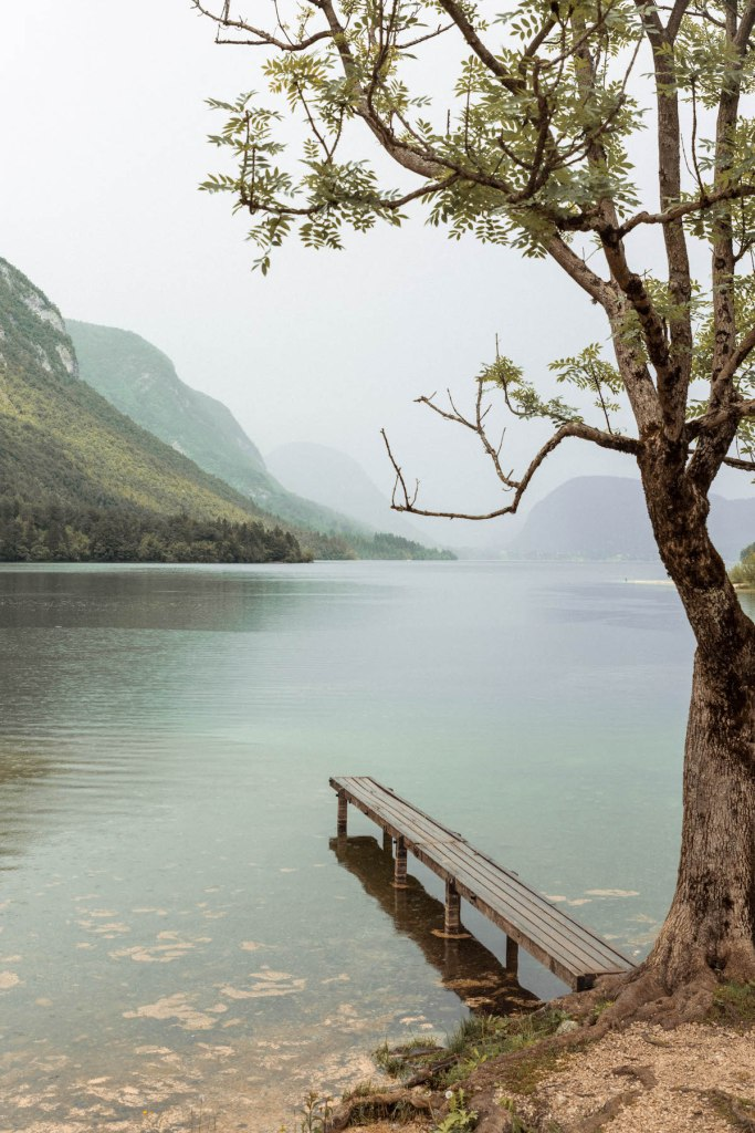 A dock on misty Lake Bohinj