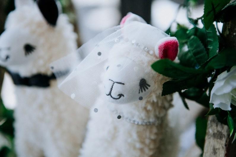A&P The nottinghamshire Wedding-732