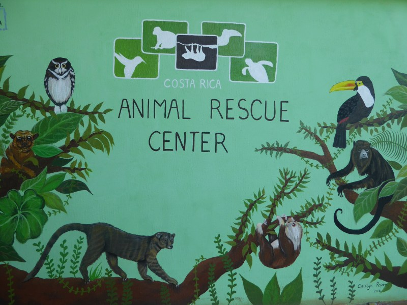 Cosa Rica Animal Rescue Center Mural