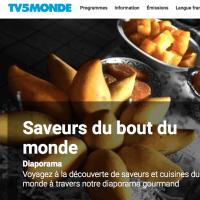 Un site très utile: TV5monde, pour s'informer, jouer, apprendre