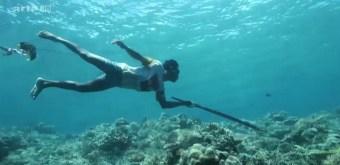 pêche harpon bejau 360°GEO reportage