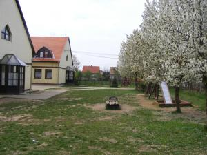 virágos iskola (2)