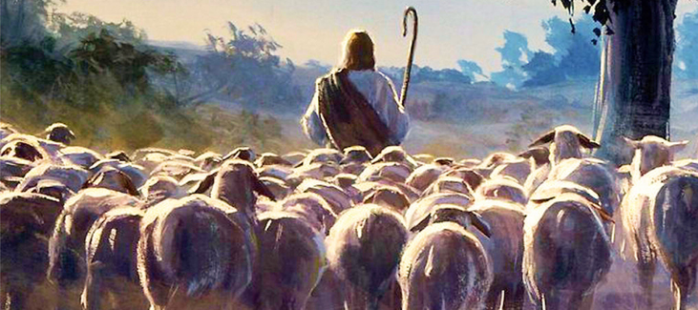 The good shepherd 2.jpg