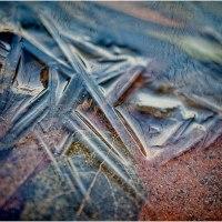 Mandelsplitter - Bild 288/365