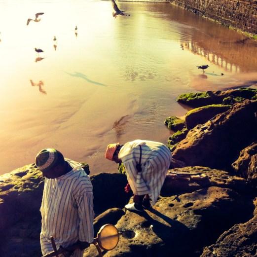 musicians catching crabs, Essaouira, Morocco