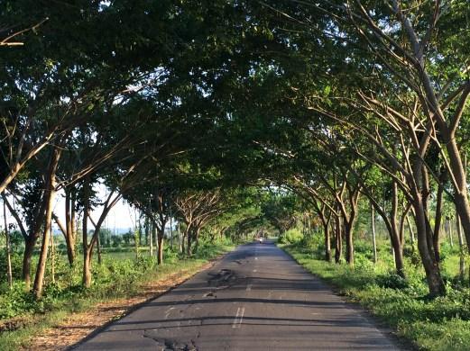 Lombok Island around Kuta