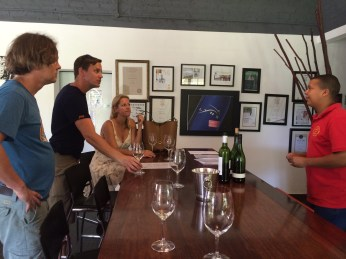 Lynx vineyard south africa with Kim Rabe
