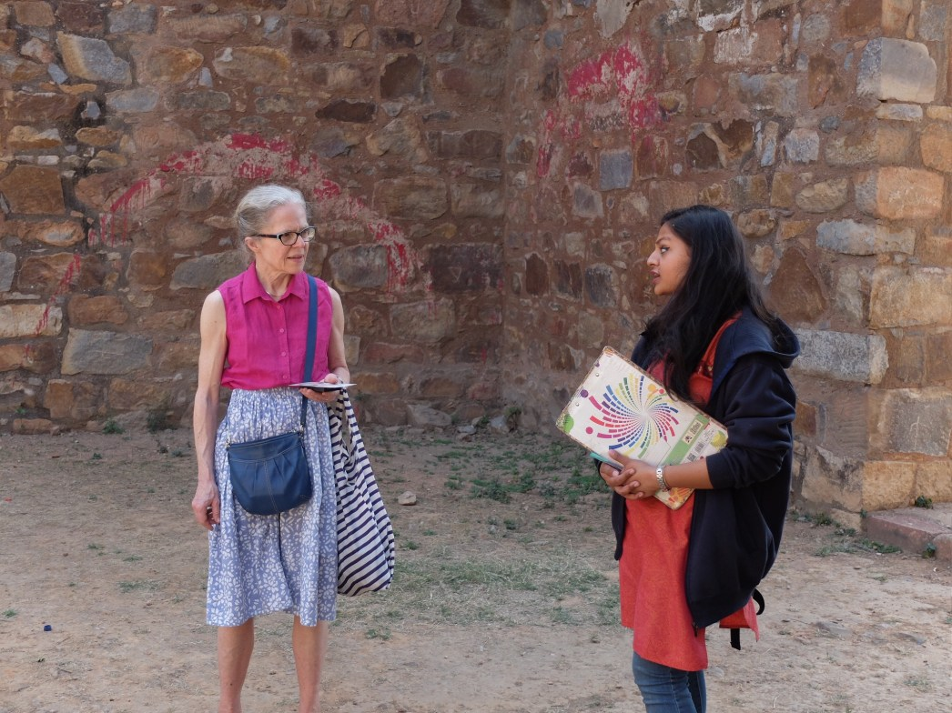 India City Tours - Mehrauli Archaeological Park Walking Tour