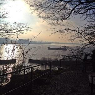 Blick vom Hirschpark über die Elbe