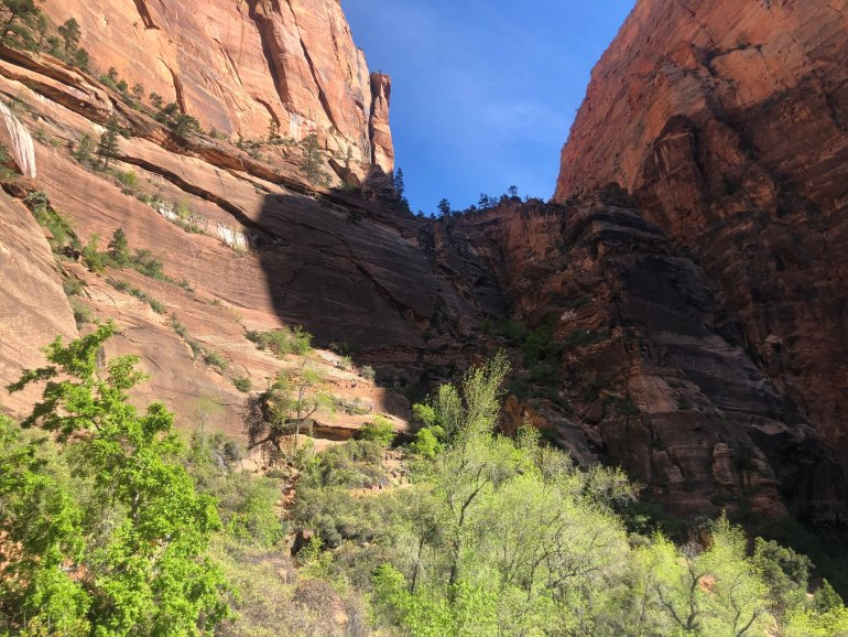 A view of the first set of switchbacks in Angels Landing.