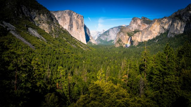 Photo of Yosemite National Park valley with Half Dome and waterfall. Green pine trees covering the Yosemite valley.