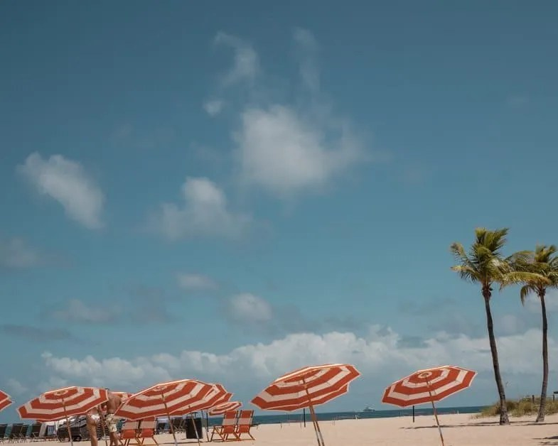 Orange and white striped umbrellas and palm trees on Fort Lauderdale beach