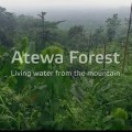 Campaign to save ATEWA Forest thickens as Obour drops hot bars on campaign song