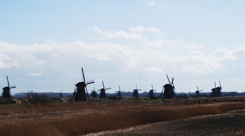 Kinderdijk-Rotterdam-10