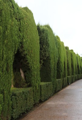 alhambra-travel-tips-spain-13