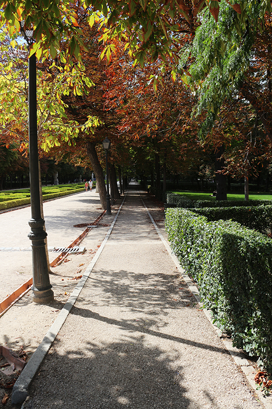 Madrid weekend 36