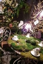 Bents Garden Centre 1