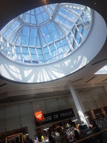 Meadowhall shopping review 24