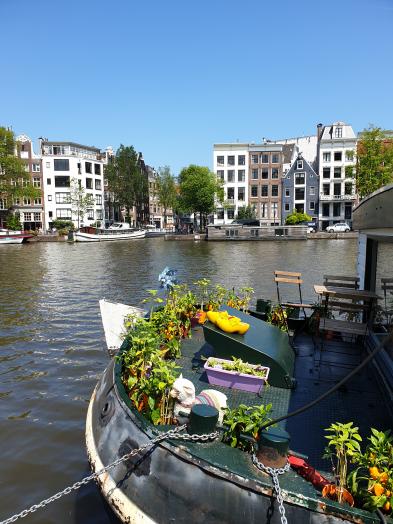 Ten reasons to visit Amsterdam 6