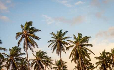 sky-beach-vacation-summer-south beach - miami