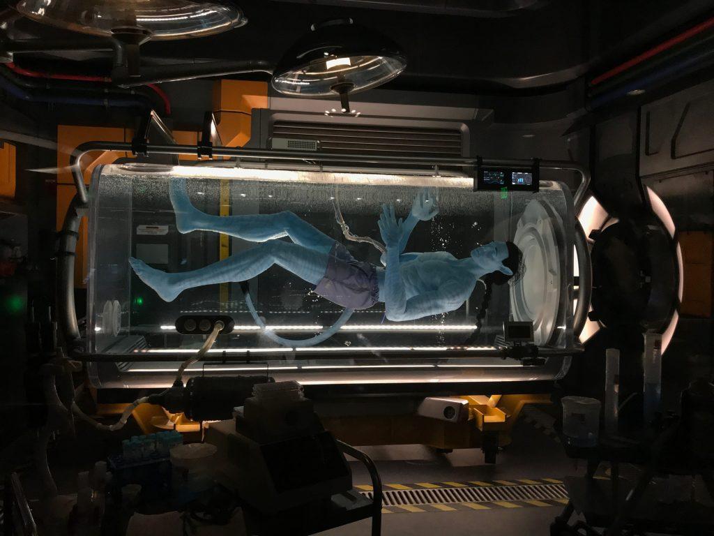 DisneySMMC - Avatar Flight of Passage