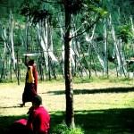 Lama at the Chimi Lhakhang