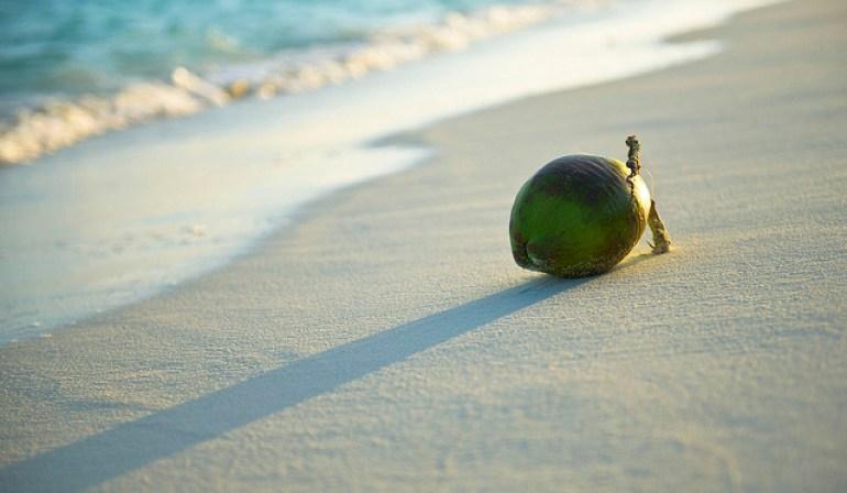 Flickr Jamie Frith coconut Thailand