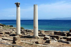 Phoenicians colonized Malta