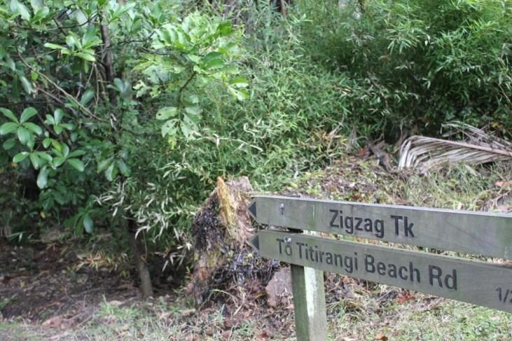Zig zag Trailhead near Titirangi Village in Auckland, New Zealand