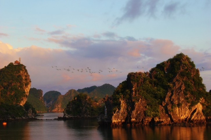 A flock of birds fly over karst mountains in Halong Bay, Vietnam