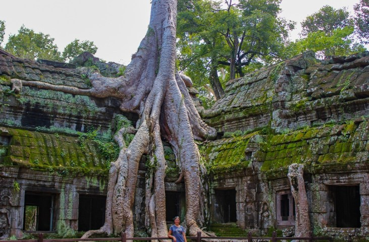 Tree roots grow over Ta Prohm temple at Angkor Park in Siem Reap, Cambodia