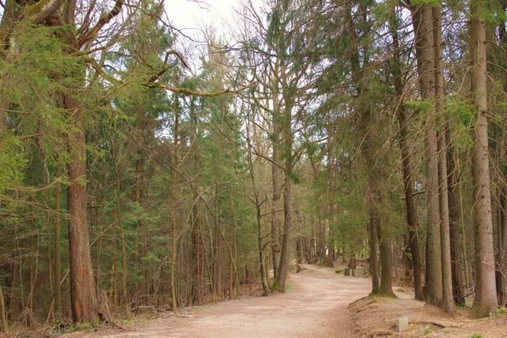 Roznik Hill hiking trails in Ljubljana, Slovenia