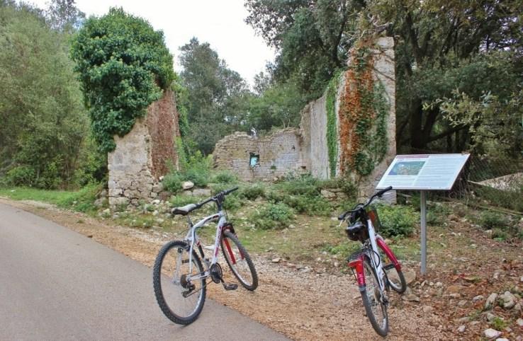 Biking in Rovinj Croatia