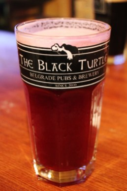 Blueberry Beer at The Black Turtle craft beer bar in Belgrade, Serbia