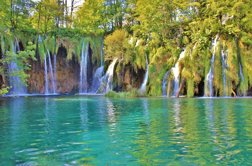 Water World Oasis, Upper Lakes, Plitvice Lakes National Park, Croatia