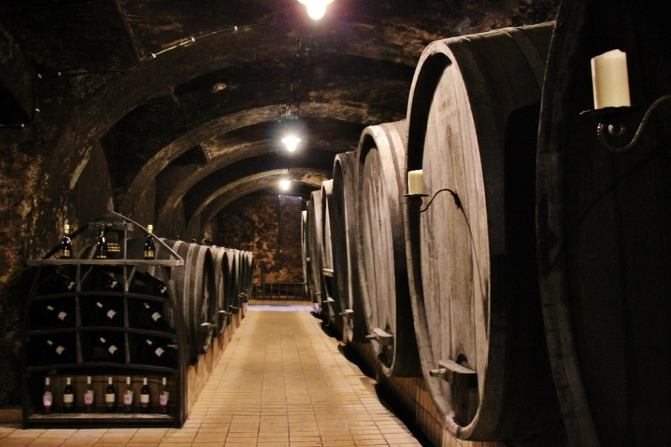 Oak Wine Barrels at Vinag Wine Cellar in Maribor, Slovenia